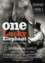 One Lucky Elephant movie poster image